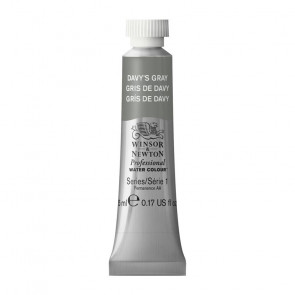 ACQUERELLO WINSOR & NEWTON S1  DAVY'S GRAY TUBO 5ml