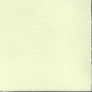 CARTA ROMA MICHELANGELO FORMATO cm 48X66 130 g/m