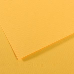 CARTONCINO MI-TEINTES 50X65cm 160 g/m² BOUTON D'OR N. 400